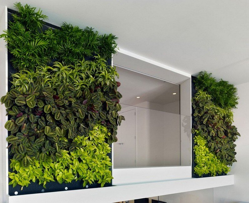 An eco-friendly design and a fresh look in the offices Jones Haydu