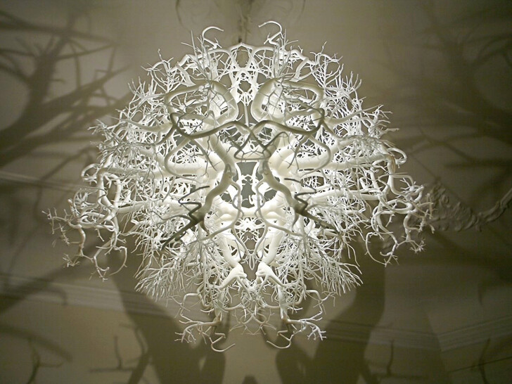 The Light sculpture Forms in Nature – a fascinating world of roots