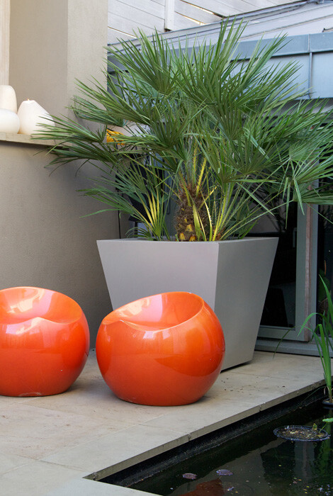 Patio garden from Wandsworth Town, London, designed by Amir Schlezinger (1)