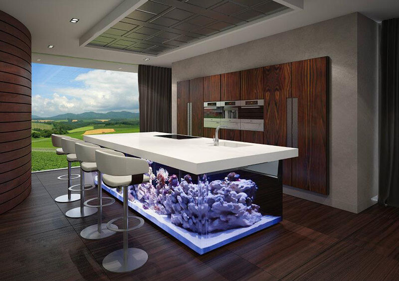 Kitchen with beautiful large aquarium for a base