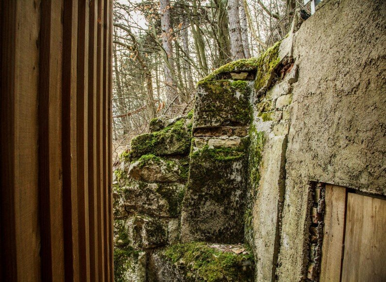 Retreat place in the woods - Tom's Hut- Heike Schlauch