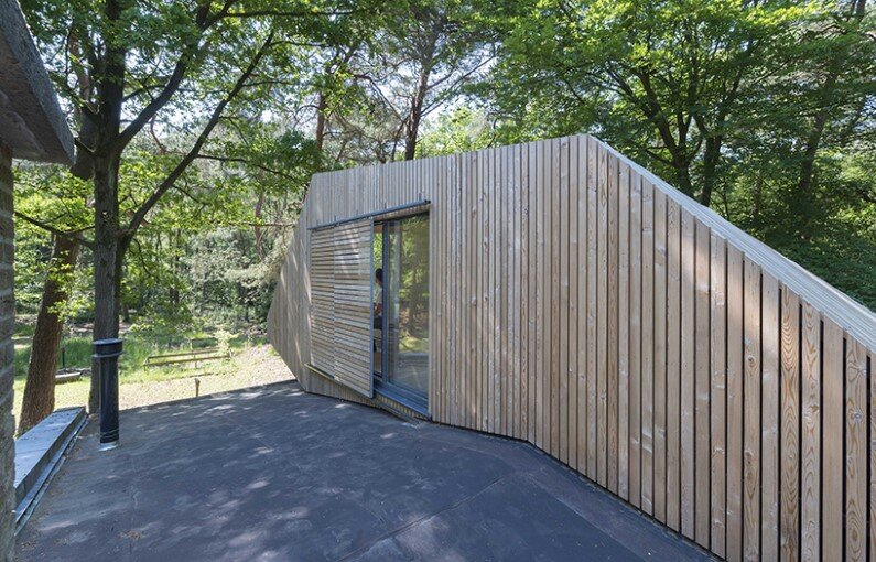Transformation Forest House sustainable, compact and sculptural rooftop extension (7)