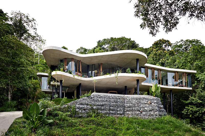 Tropical house nestled amongst treetops in Queensland (1)
