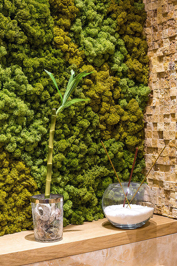 Ecodesign that integrates fitomuduli with live plants - bathroom interior design (15)
