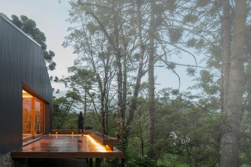 Metal structure house in the midst of a beautiful forest of pine trees (1)