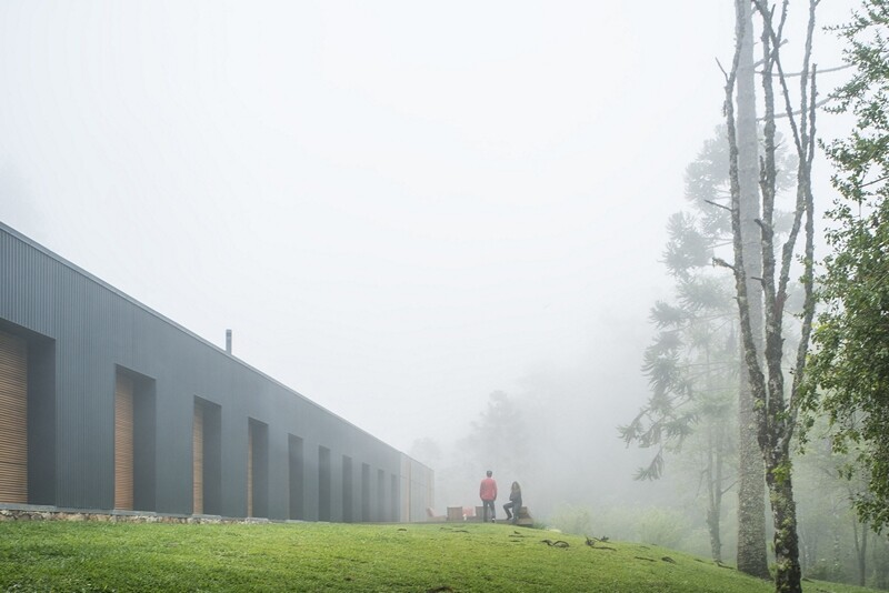Metal structure house in the midst of a beautiful forest of pine trees (6)