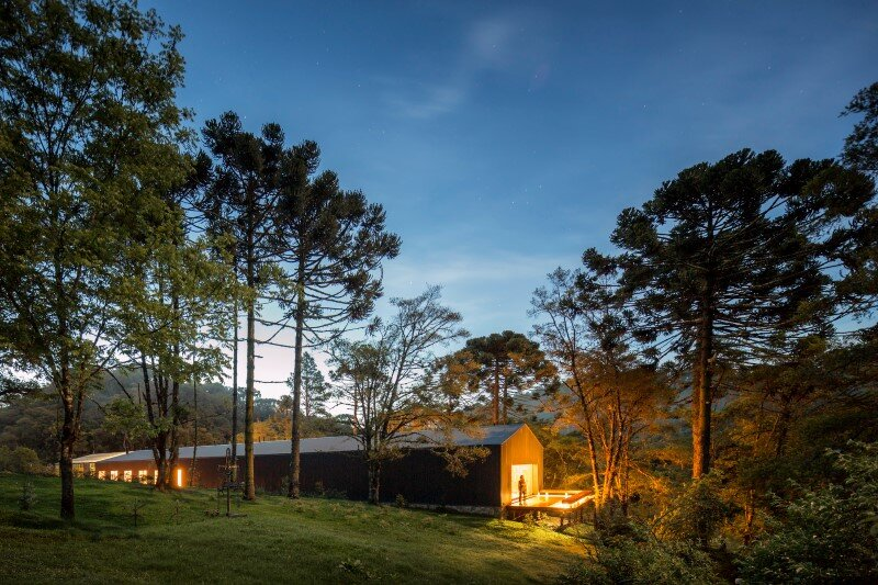 Metal structure house in the midst of a beautiful forest of pine trees 7 (3)