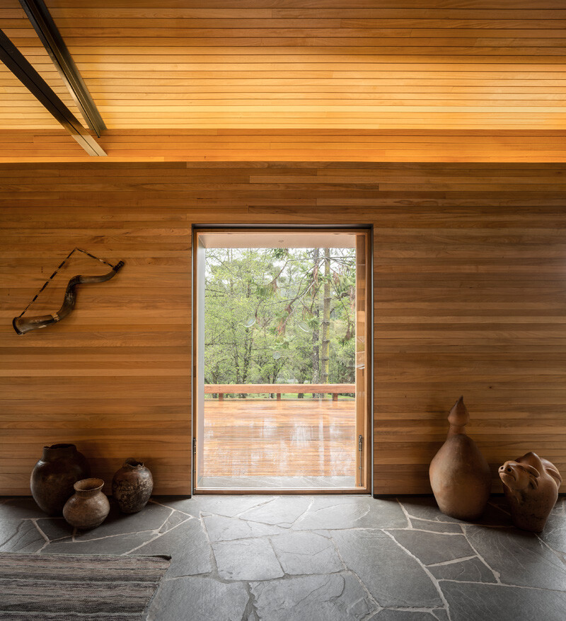 Metallic structure house in the midst of a beautiful forest of pine trees (18)