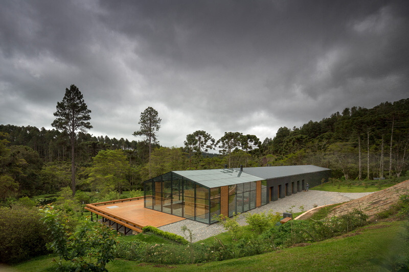 Metallic structure house in the midst of a beautiful forest of pine trees (2)
