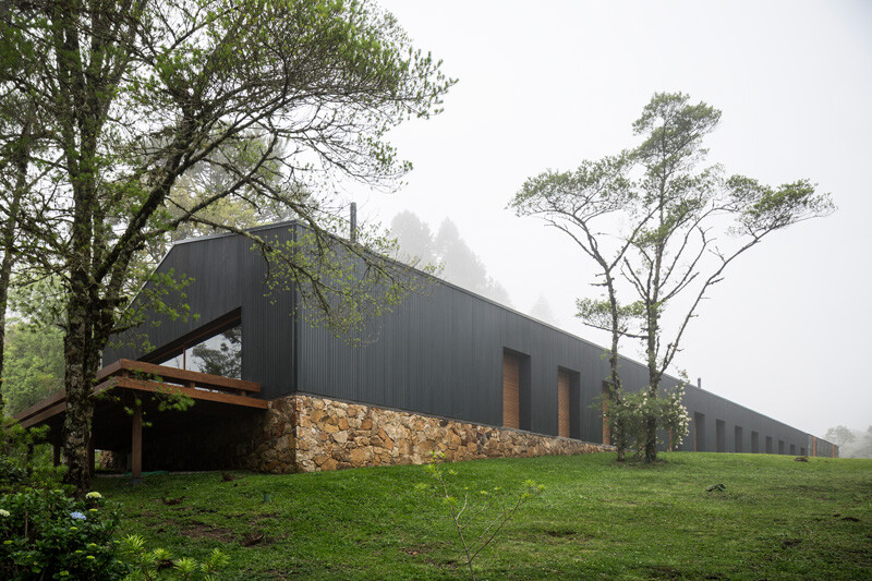 Metallic structure house in the midst of a beautiful forest of pine trees (3)