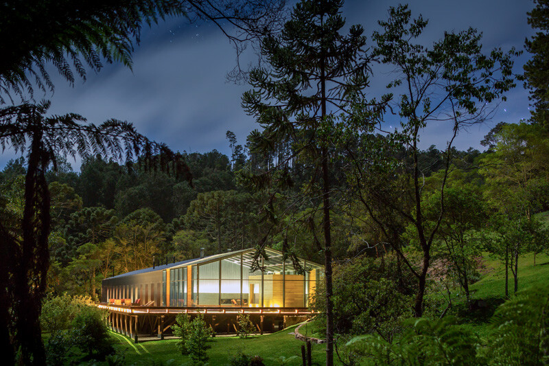 Metallic structure house in the midst of a beautiful forest of pine trees (5)