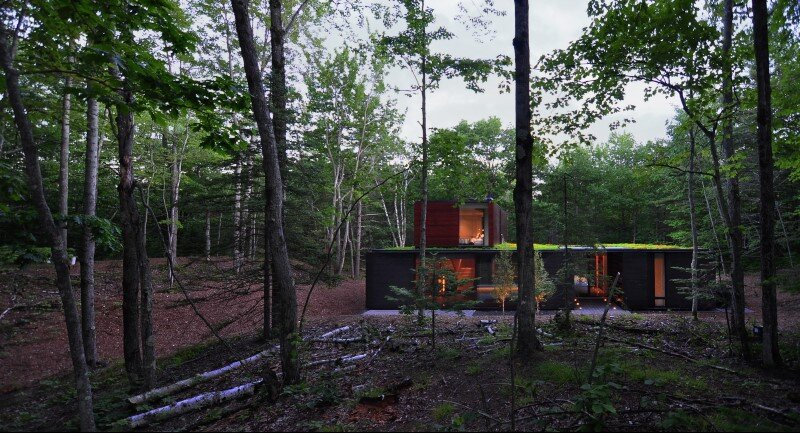 Pleated house - textured wood structure with a green roof (9)