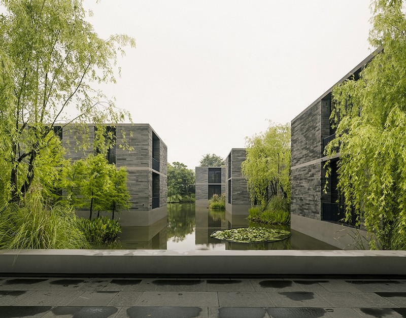 Apartment buildings surrounded by a water garden and wild landscape (8)