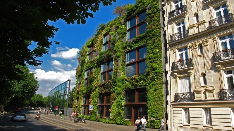 Sustainable Houses Designed as Trees by Oas1s (15)
