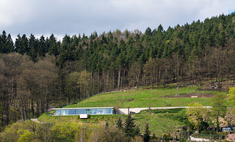 Innovative Sustainable Villa Built from Glass, Steel and Concrete (12)