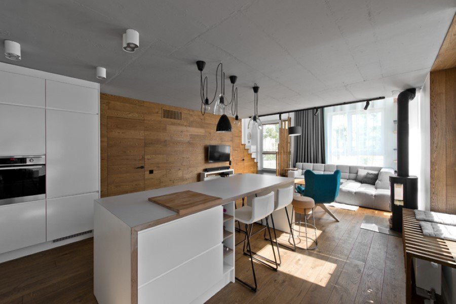 Scandinavian Modern Loft Interior by InArch (6)