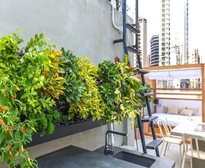 Hong Kong Cramped Flat Converted in a Eco High Tech Rooftop Retreat 13