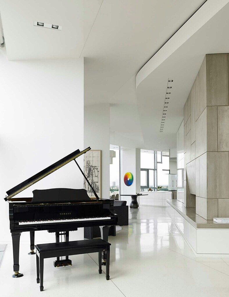 Panoramic Penthouse by Workshop APD (4)