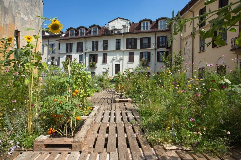 Piuarch Studio Has Converted its Rooftop into a Permanent Vegetable Garden (2)
