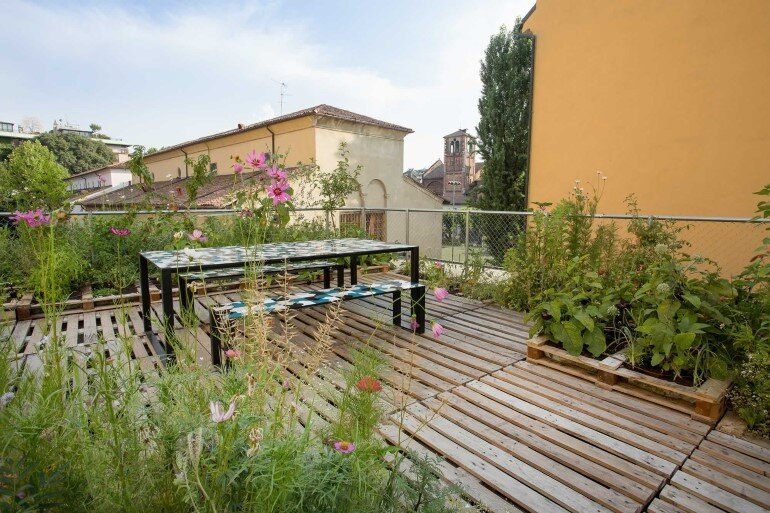 Piuarch Studio Has Converted its Rooftop into a Permanent Vegetable Garden (5)