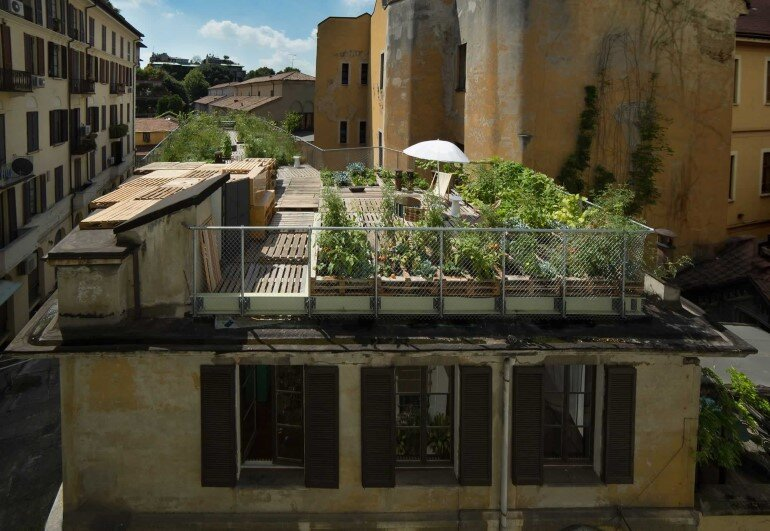 Piuarch Studio Has Converted its Rooftop into a Permanent Vegetable Garden (6)
