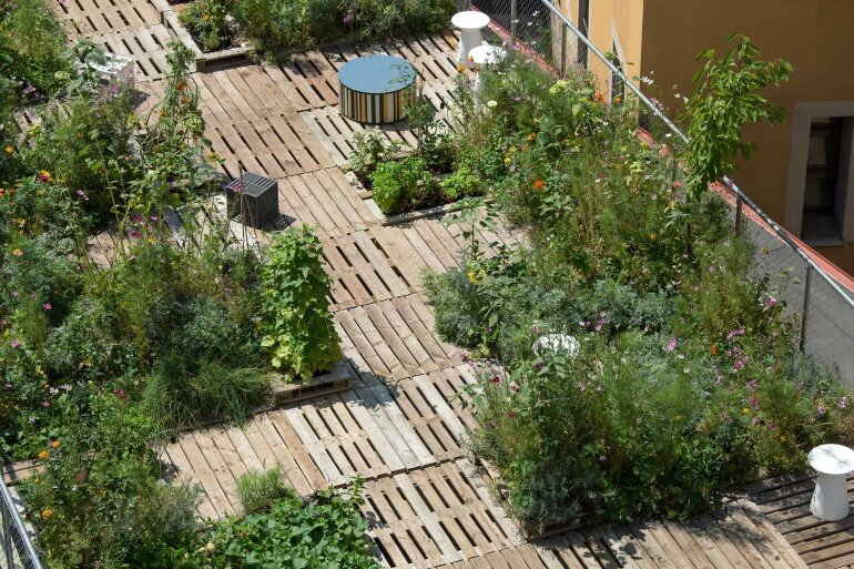 Piuarch Studio Has Converted its Rooftop into a Permanent Vegetable Garden (7)