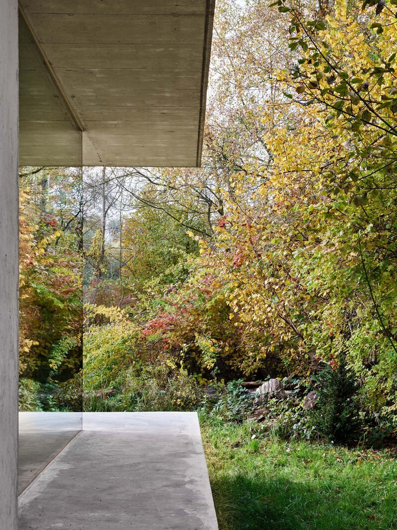 The Architecture of This Family House Combines Raw Concrete with Dark Wood (7)