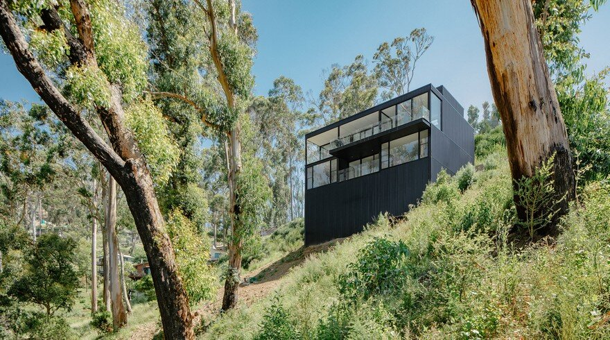 Wye River Box Home Overlooking Australian Bushland