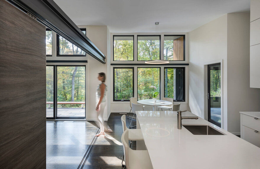 Woodland Retreat / Flavin Architects