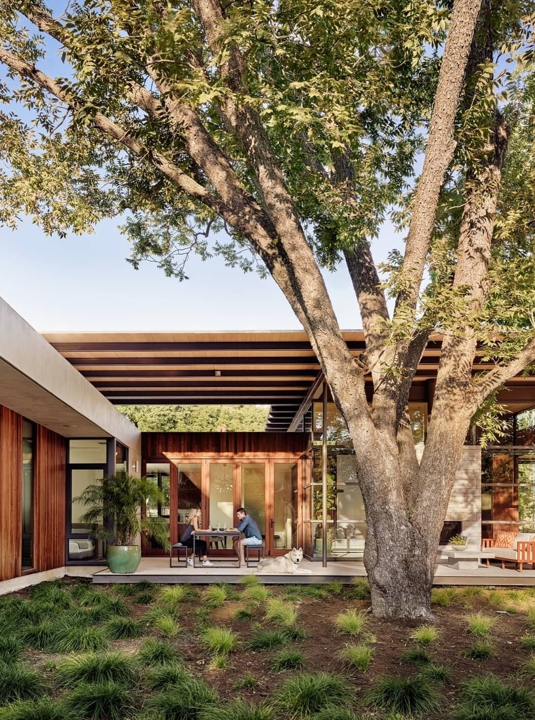 Canopy Residence / A Parallel Architecture